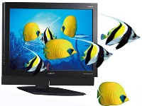 3D_TV_Fish_s